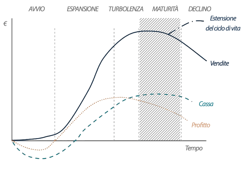 Ciclo di vita aziendale: fase di maturità